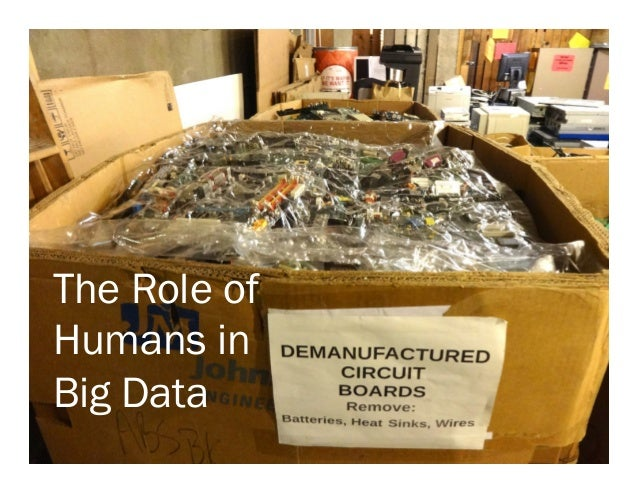 The Role of Humans in Big Data