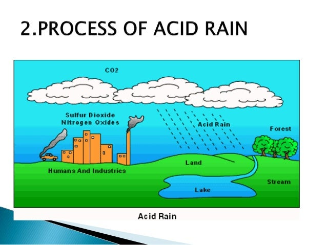 The growing pains caused by acid rain on our environment
