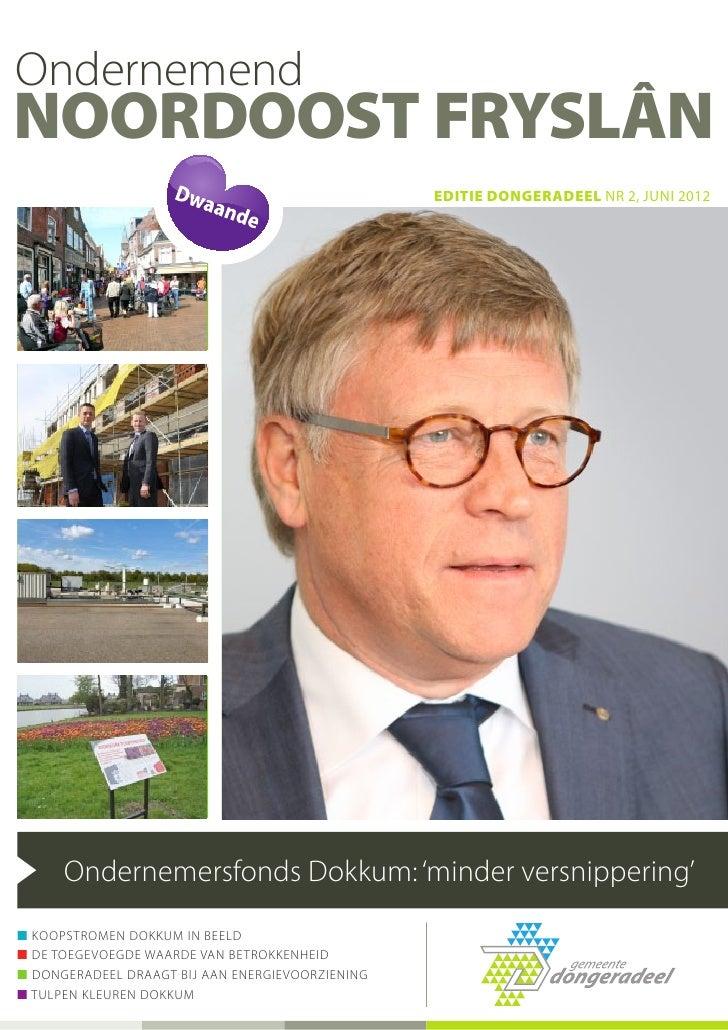 OndernemendNoordoost Fryslân                                                  editie dongeradeel NR 2, juni 2012      Onde...