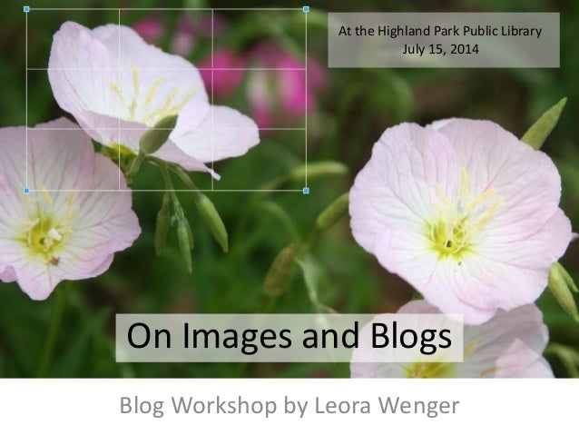 On Images and Blogs Blog Workshop by Leora Wenger At the Highland Park Public Library July 15, 2014