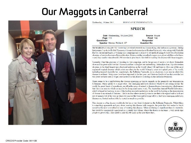 CRICOS Provider Code: 00113B Our Maggots in Canberra!