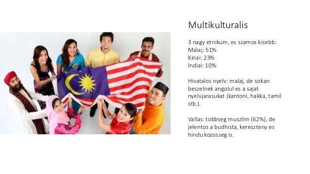 Malajzia digitális gyorskörképe Slide 3