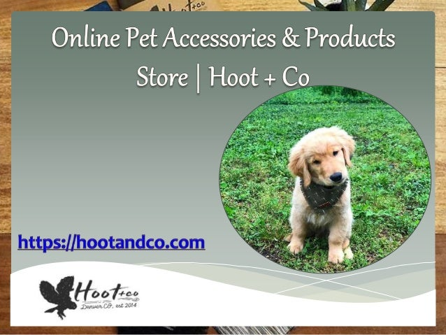 Online pet accessories shop