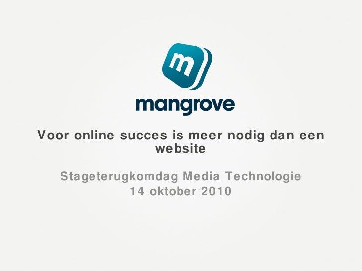 Voor online succes is meer nodig dan een website Stageterugkomdag Media Technologie 14 oktober 2010