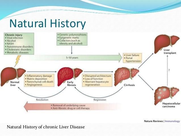 Natural Treatment For Ut