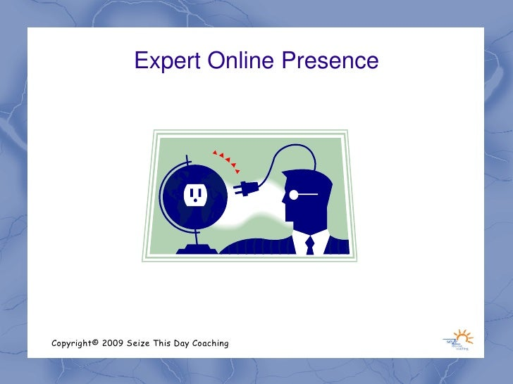 Expert Online Presence     Copyright© 2009 Seize This Day Coaching