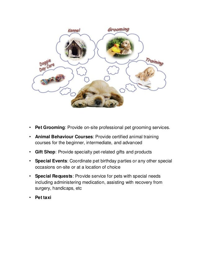 A Sample Doggie Daycare Business Plan Template