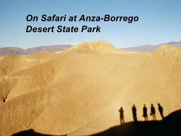 On Safari at Anza-Borrego Desert State Park