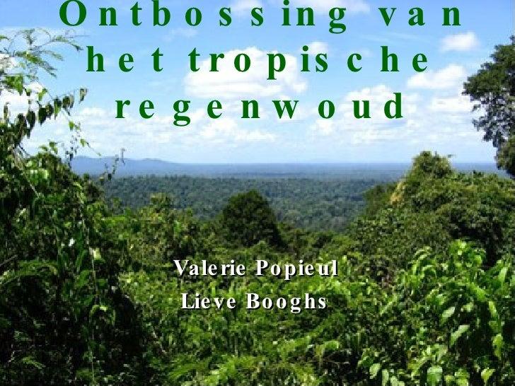 Ontbossing van het tropische regenwoud Valerie Popieul Lieve Booghs