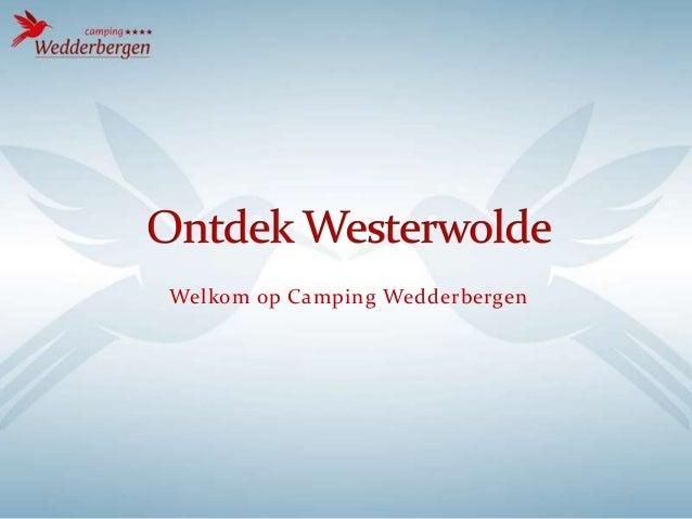 Welkom op Camping Wedderbergen