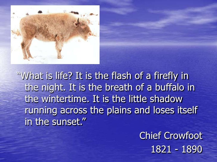 """""""What is life? It is the flash of a firefly in the night. It is the breath of a buffalo in the wintertime. It is the littl..."""