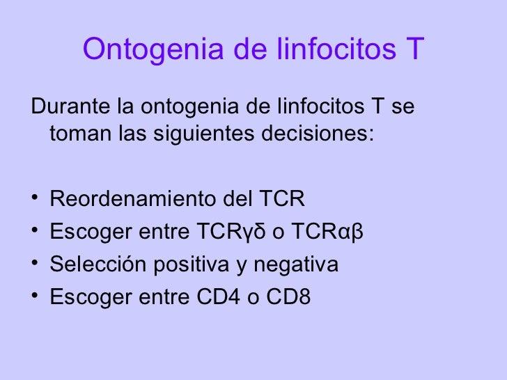 Ontogenia de Linfocitos B y T
