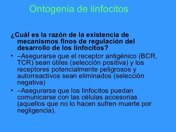 Ontogenia de linfocitos¿Cuál es la razón de la existencia de  mecanismos finos de regulación del  desarrollo de los linfoc...