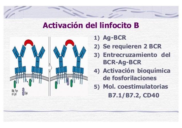 Curso online bioquimica