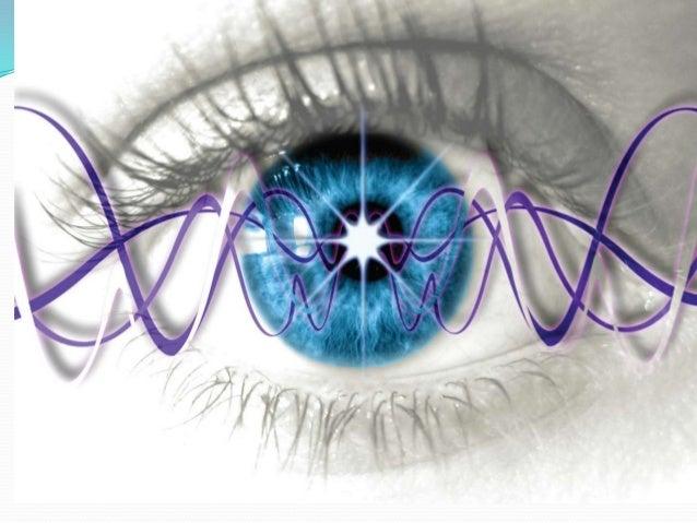 A fisica quantica em nossa vida