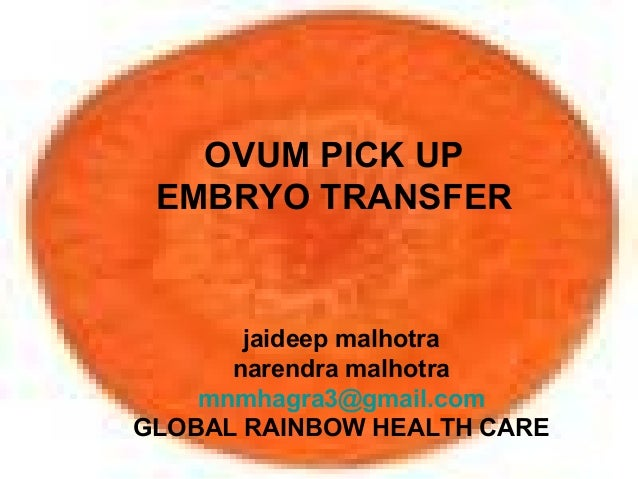 OVUM PICK UP EMBRYO TRANSFER jaideep malhotra narendra malhotra mnmhagra3@gmail.com GLOBAL RAINBOW HEALTH CARE