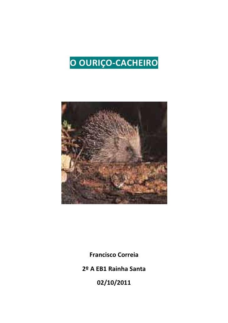 O OURIÇO-CACHEIRO<br />Francisco Correia<br />2º A EB1 Rainha Santa<br />02/10/2011<br />O OURIÇO-CACHEIRO<br />O Ouriço-c...