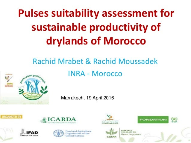 Pulses suitability assessment for sustainable productivity of drylands of Morocco Rachid Mrabet & Rachid Moussadek INRA - ...