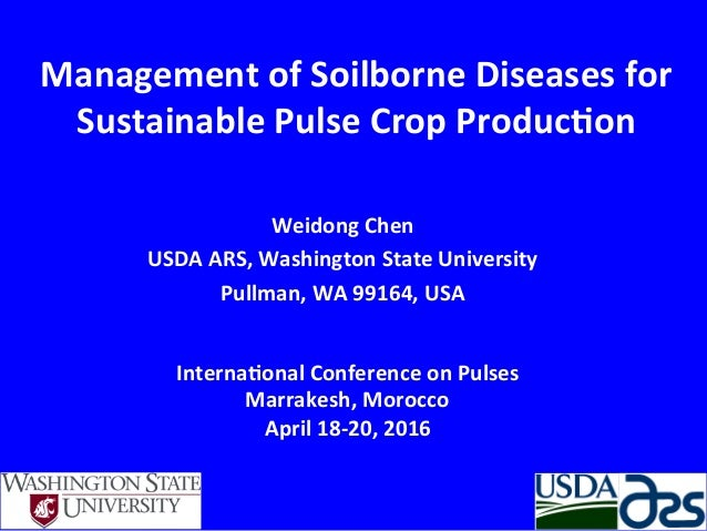 Management	   of	   Soilborne	   Diseases	   for	    Sustainable	   Pulse	   Crop	   Produc8on	    Weidong	   Chen	    USD...