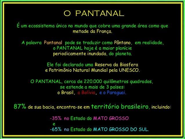 O PANTANALO PANTANAL É um ecossistema único no mundo que cobre uma grande área como que metade da França. A palavra Pantan...