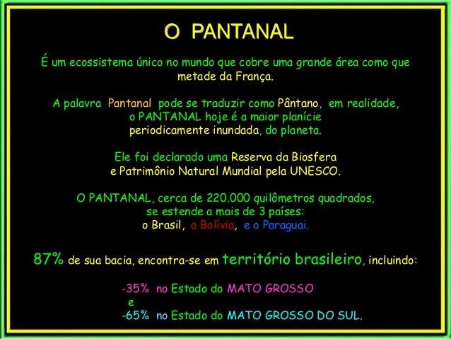 O PANTANAL  É um ecossistema único no mundo que cobre uma grande área como que  metade da França.  A palavra Pantanal pode...