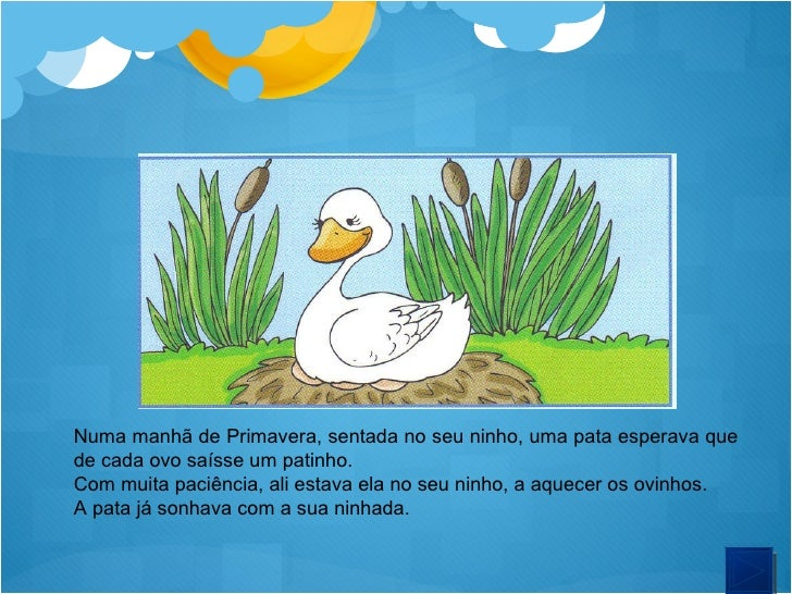 Numa manhã de Primavera, sentada no seu ninho, uma pata esperava que de cada ovo saísse um patinho. Com muita paciência, a...