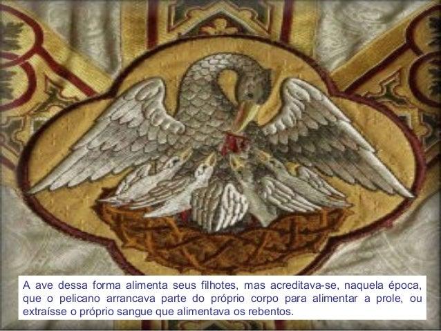 O Pelicano Distribuidora O Pelicano