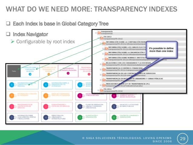 WHAT DO WE NEED MORE: TRANSPARENCY INDEXES  Each Index is base in Global Category Tree © S A G A S O L U C I O N E S T É ...
