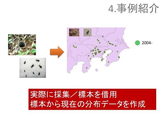 2004- 実際に採集/標本を借用 標本から現在の分布データを作成 4.事例紹介