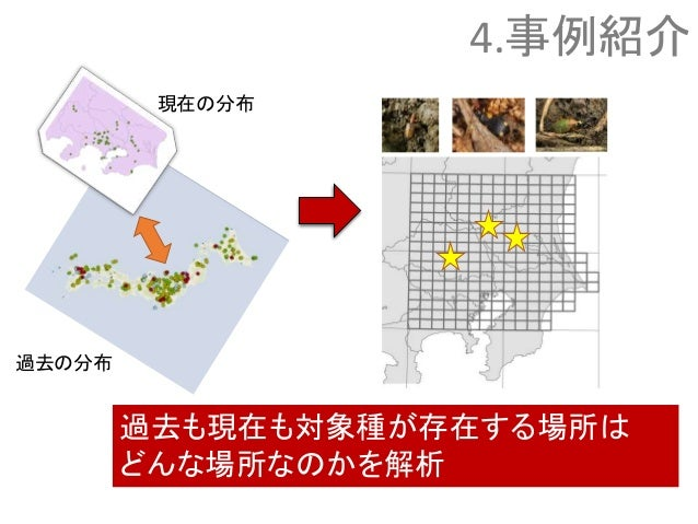 現在の分布 過去の分布 過去も現在も対象種が存在する場所は どんな場所なのかを解析 4.事例紹介