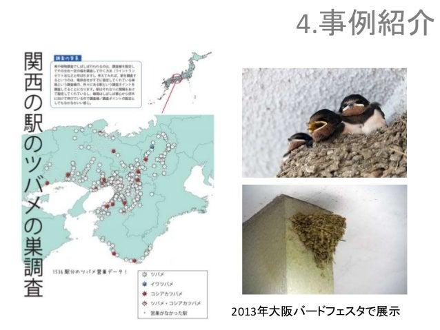 4.事例紹介 2013年大阪バードフェスタで展示