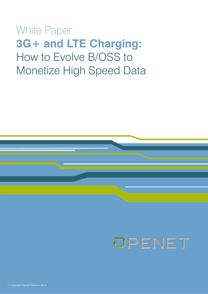 White Paper       3G+ and LTE Charging:       How to Evolve B/OSS to       Monetize High Speed Data© Copyright Openet Tele...