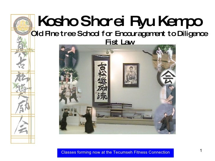 Classes forming now at the Tecumseh Fitness Connection Kosho Shorei Ryu Kempo Old Pine tree School for Encouragement to Di...