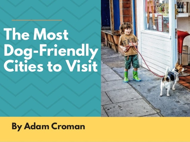 The Most Dog-Friendly Cities to Visit By Adam Croman