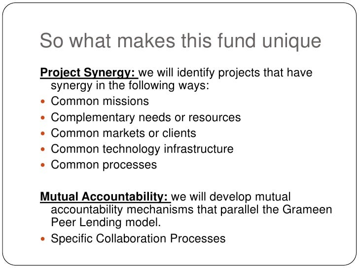 So what makes this fund unique<br />Project Synergy: we will identify projects that have synergy in the following ways:<br...