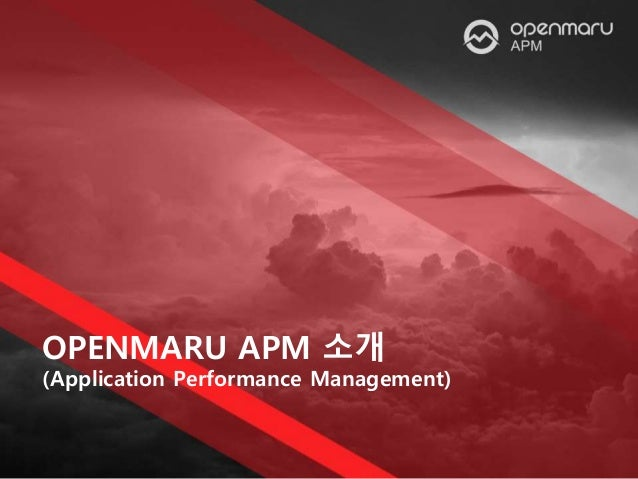 OPENMARU APM 소개 (Application Performance Management)