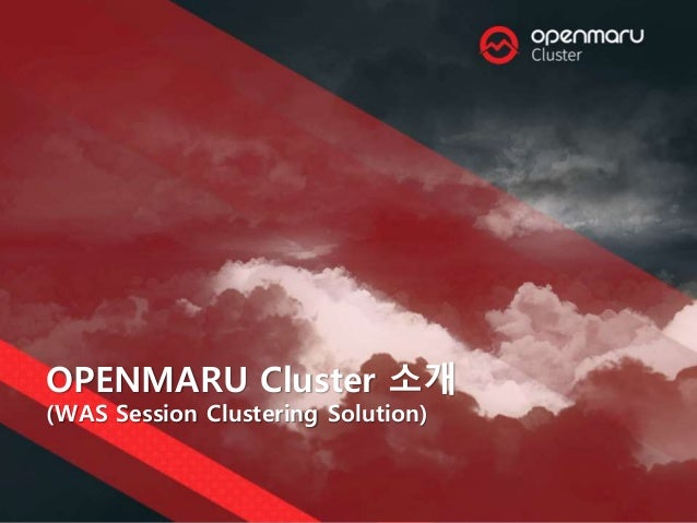 OPENMARU Cluster 소개 (WAS Session Clustering Solution)