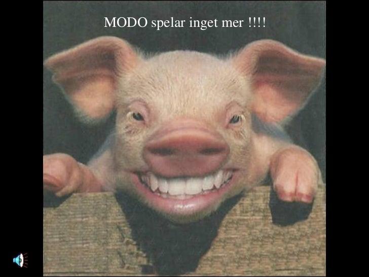 MODO spelar inget mer !!!!