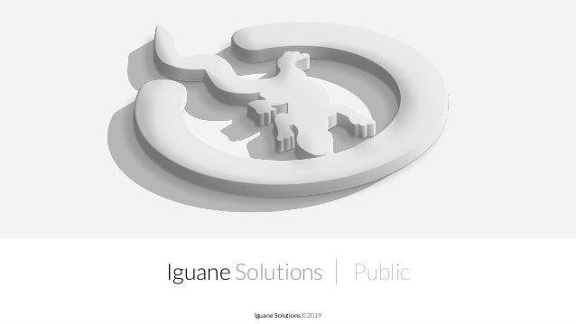 Iguane Solutions | Public Iguane Solutions ©2019
