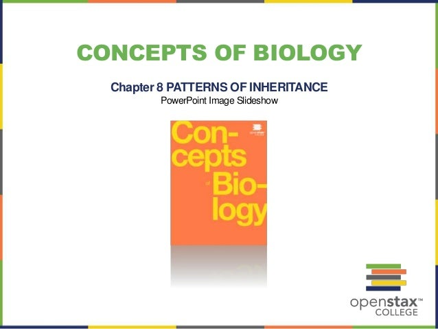 CONCEPTS OF BIOLOGY  Chapter 8 PATTERNS OF INHERITANCE  PowerPoint Image Slideshow