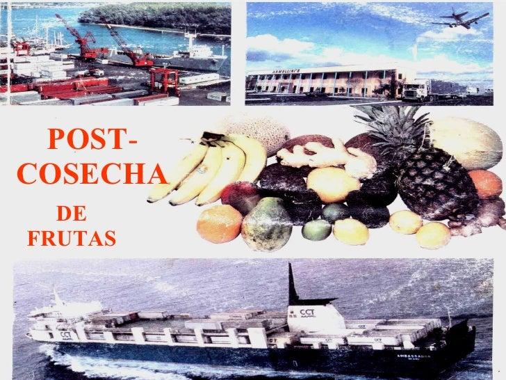 POST - COSECHA DE   FRUTAS