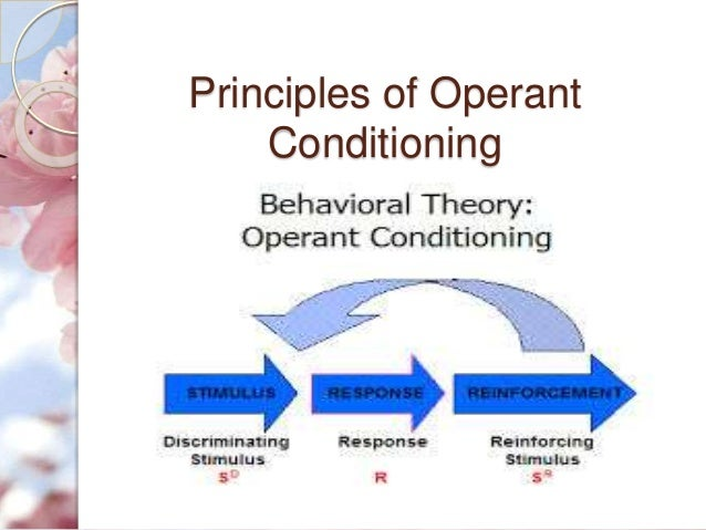 Skinners theory of operant conditioning and