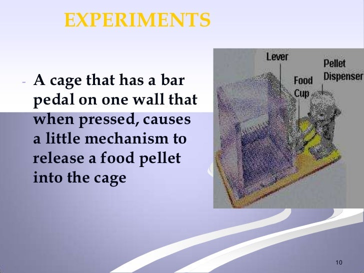 EXPERIMENTS-   A cage that has a bar    pedal on one wall that    when pressed, causes    a little mechanism to    release...