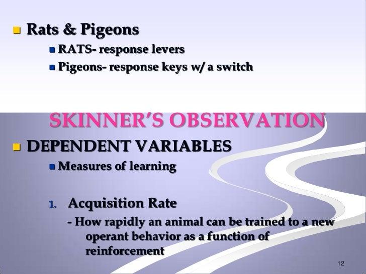    Rats & Pigeons       RATS- response levers       Pigeons- response keys w/ a switch      SKINNER'S OBSERVATION   DE...