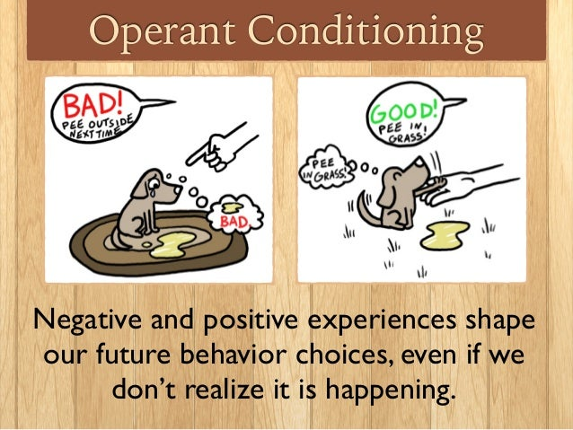 Operant Conditioning Part 1
