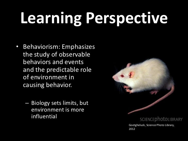 Operant Conditioning Powerpoint Lecture Slide 2