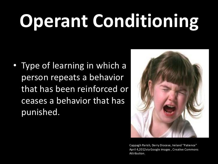 Operant Conditioning Powerpoint Lecture Slide 3