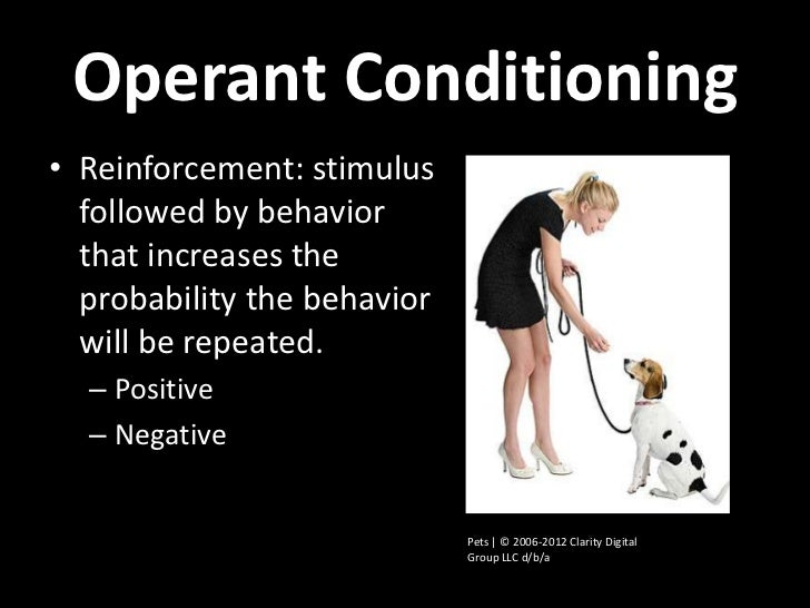 Operant Conditioning• Reinforcement: stimulus  followed by behavior  that increases the  probability the behavior  will be...
