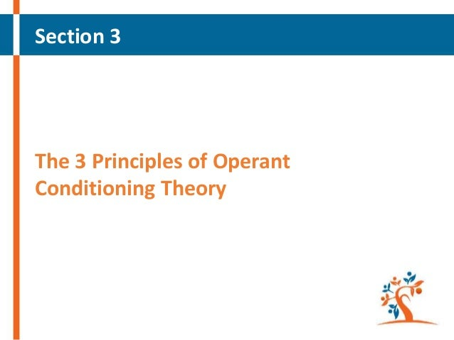 """learning and teaching methods reinforcement punishment and operant theory Reinforcement theory is a form of operant conditioning and focuses on the  in  educational settings the rewards can include food, verbal praise, or a  skinner  developed a method of shaping or """"method of successive."""