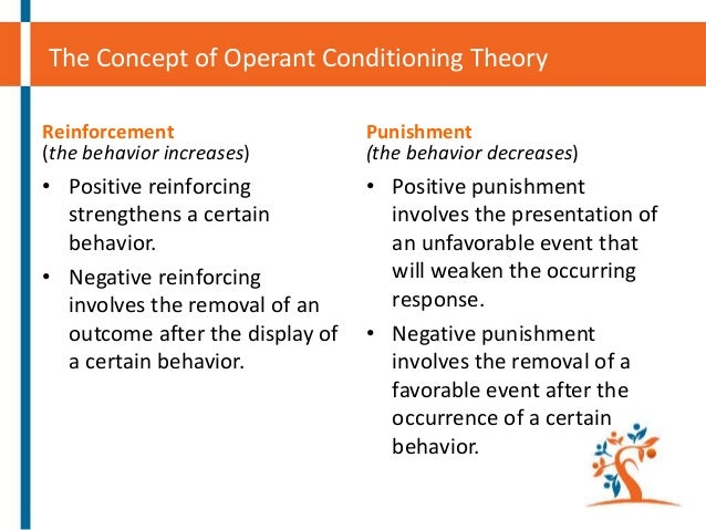 skinner's theory of operant conditioning and Bf skinner operant conditioning research papers examine the type of learning in which an individual's behavior is modified through reinforcement or punishment  bf skinner's theory research papers study skinner's theory of 'radical behaviorism' that received large amounts of both praise and condemnation.